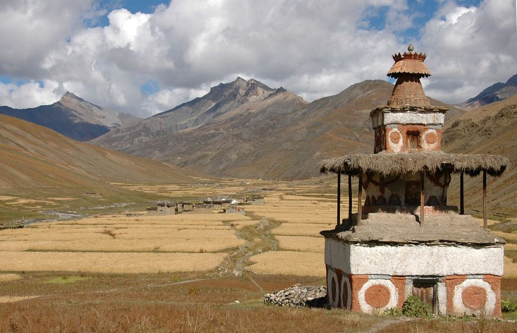 Chorten_and_barley_fields
