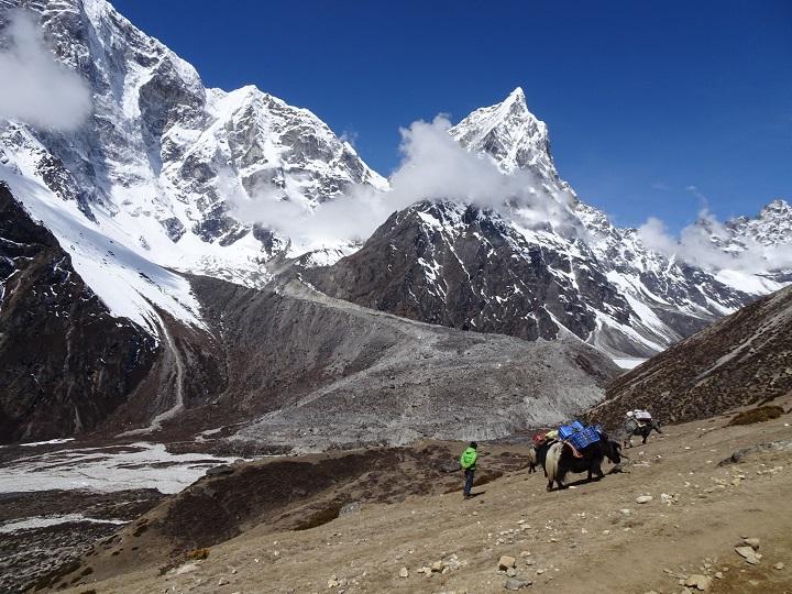 trekkers on the way to everest trek